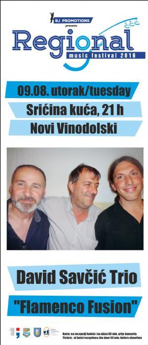 Koncert David Savčić Trio,