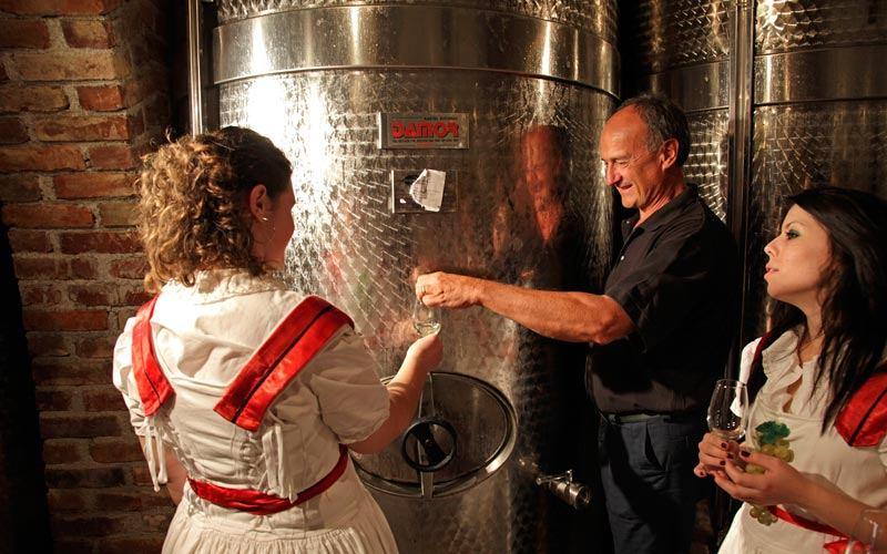 Dan otvorenog podruma vinarije Pavlomir
