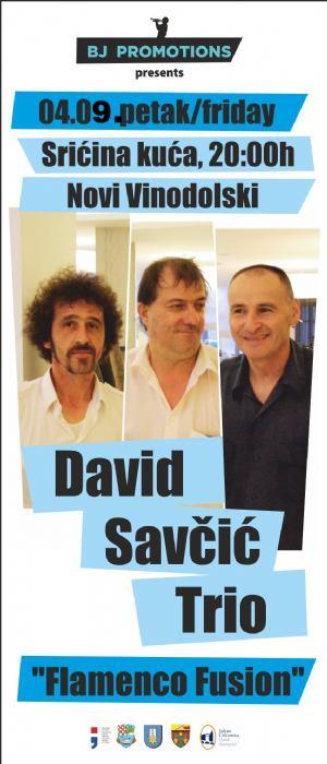 David Savčić Trio
